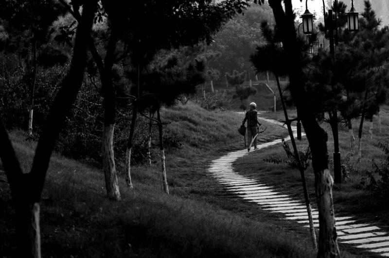 人生路上,总有非走不可的弯路.jpg