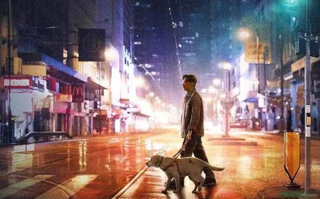 《小Q》票房破亿 导盲犬和主人的情感成为泪点2.jpg