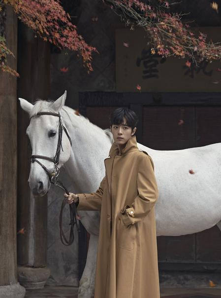 肖战白马骑士造型