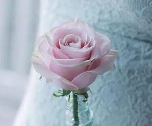 对老婆说的甜言蜜语 爱你直到生命的最后一天