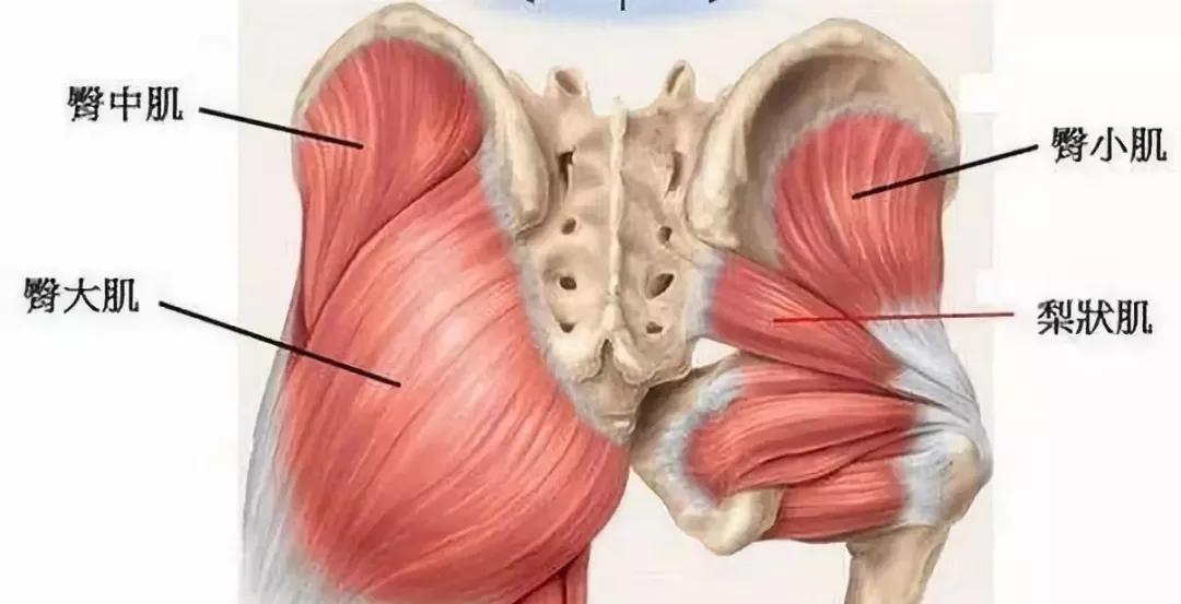 臀部两侧凹陷是因为什么?这样锻炼可以改善